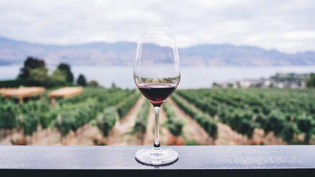 【夢占い】ワインの夢に関する6つの意味|愛情・対人関係を暗示